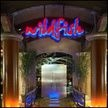 Wildfish Seafood Grille -...